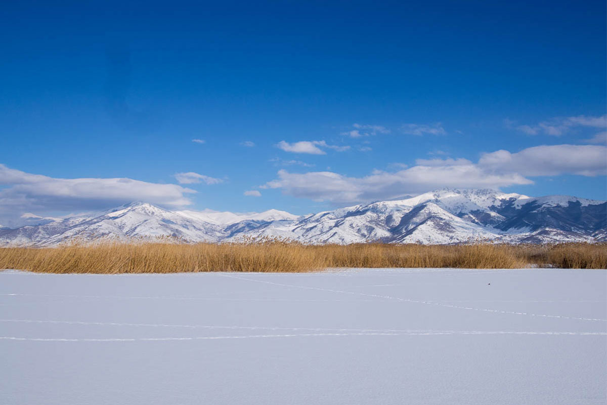 Frozen Lesser Prespa Lake - ©Julian Hoffman/ MBPNP Archive