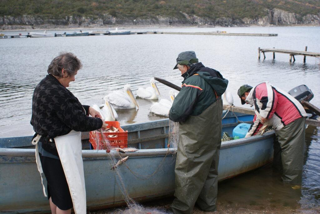 Αλιείς/ Λ. Αναστασιάδου- Αρχείο ΦΔΕΠαΠ