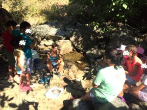 Περιβαλλοντική εκπαίδευση/ Τοπαλοπούλου Α.- Αρχείο ΦΔΕΠαΠ
