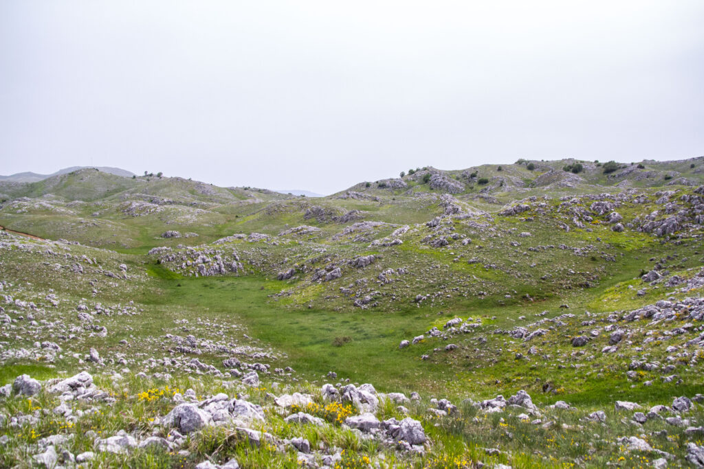 Όρος Τρικλάριο/ Ε. Καζίλα- Αρχείο ΦΔΕΠαΠ